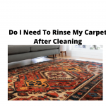 Do I Need To Rinse My Carpet After Cleaning