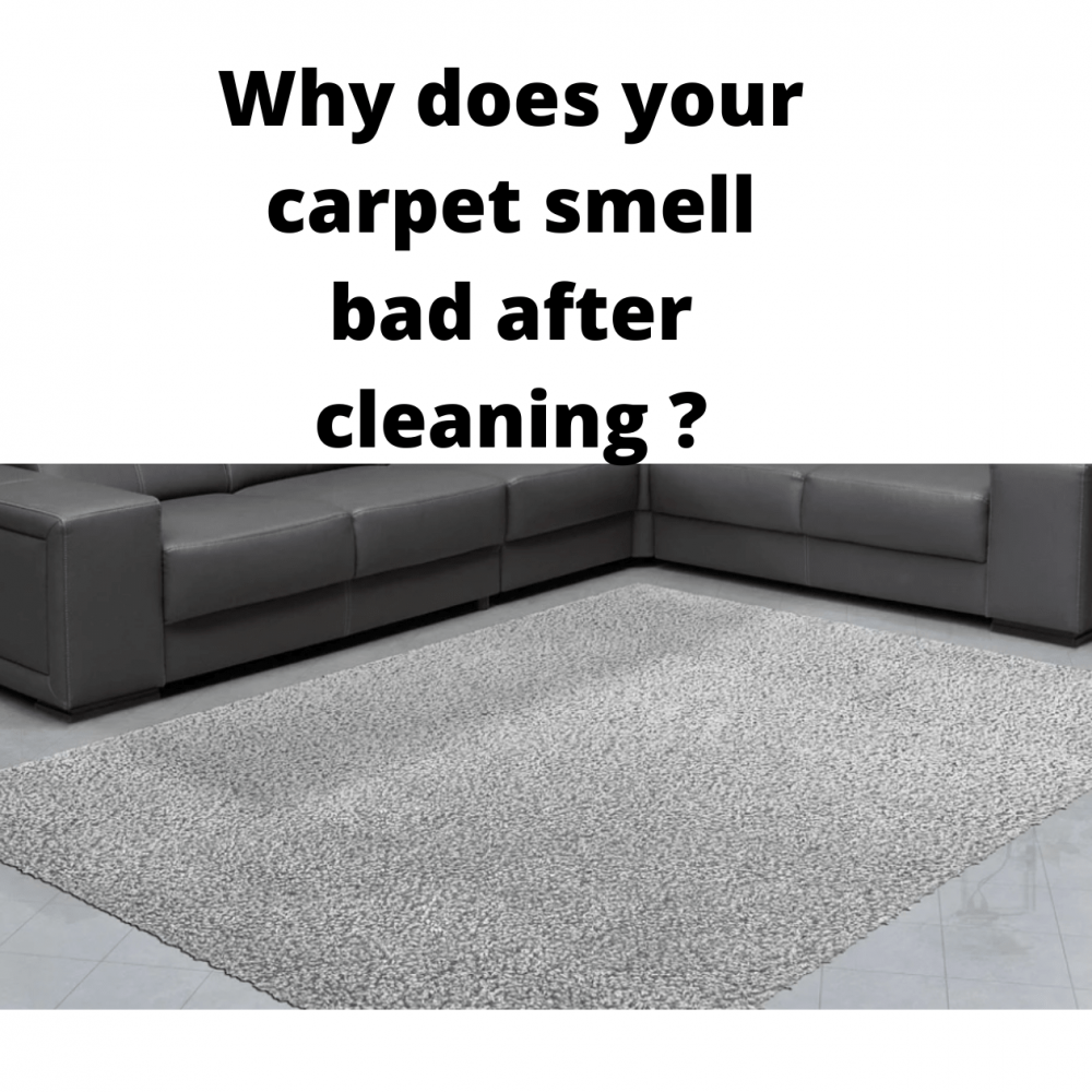 Why does your carpet smell bad after cleaning and what to do?