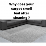 Why does your carpet smell bad after cleaning